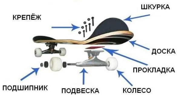 конструкция скейта